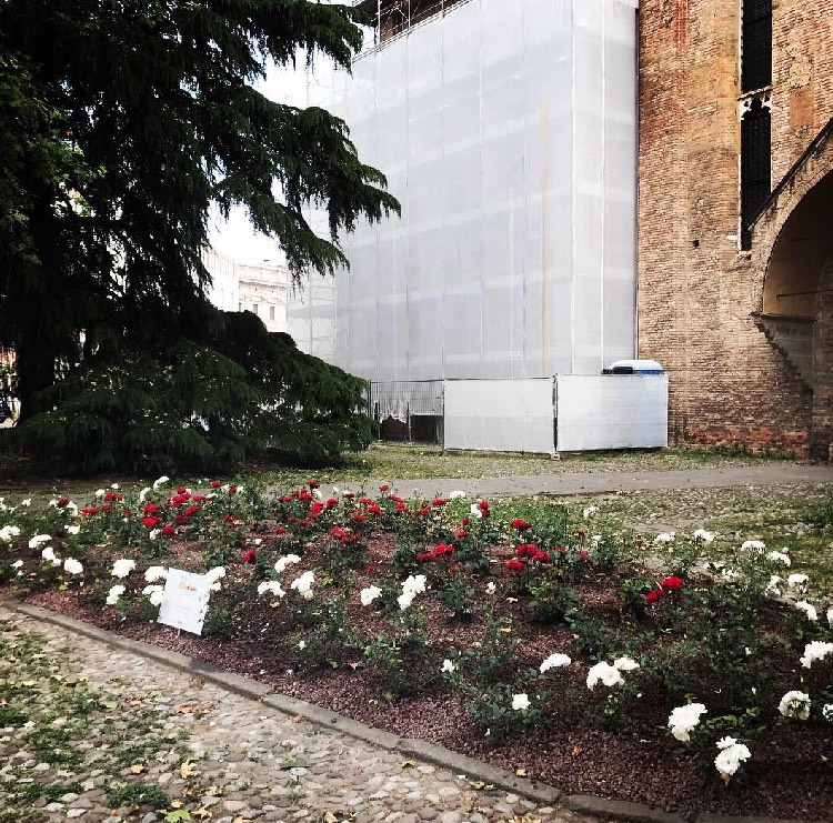 Realizzazioni Green Park e superfici drenanti | Vivailazzaro.it