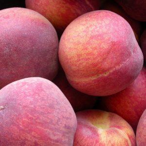 Pesco Springlady albero da frutta con portamento assurgente | Vivailazzaro.it