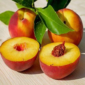 Nettarina - Prunus persicae batsch